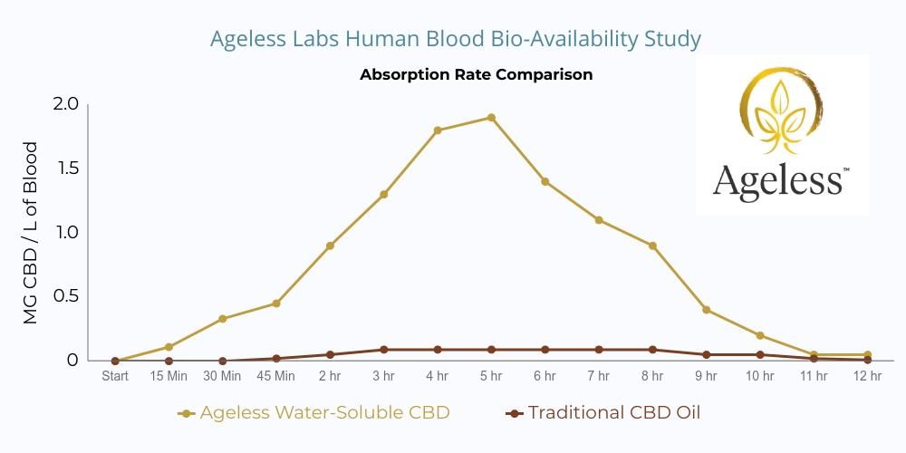 CBD Absorption